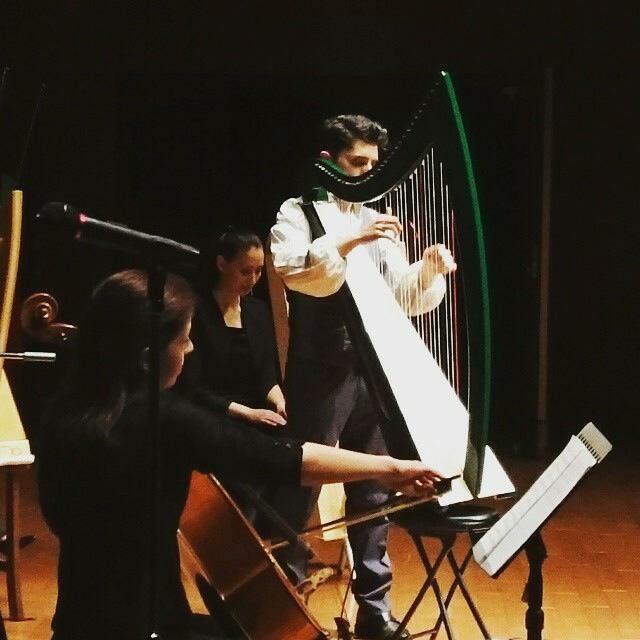 美しすぎるハープ奏者「ファビウス・コンスタブル」のツアーがスタートサムネイル画像
