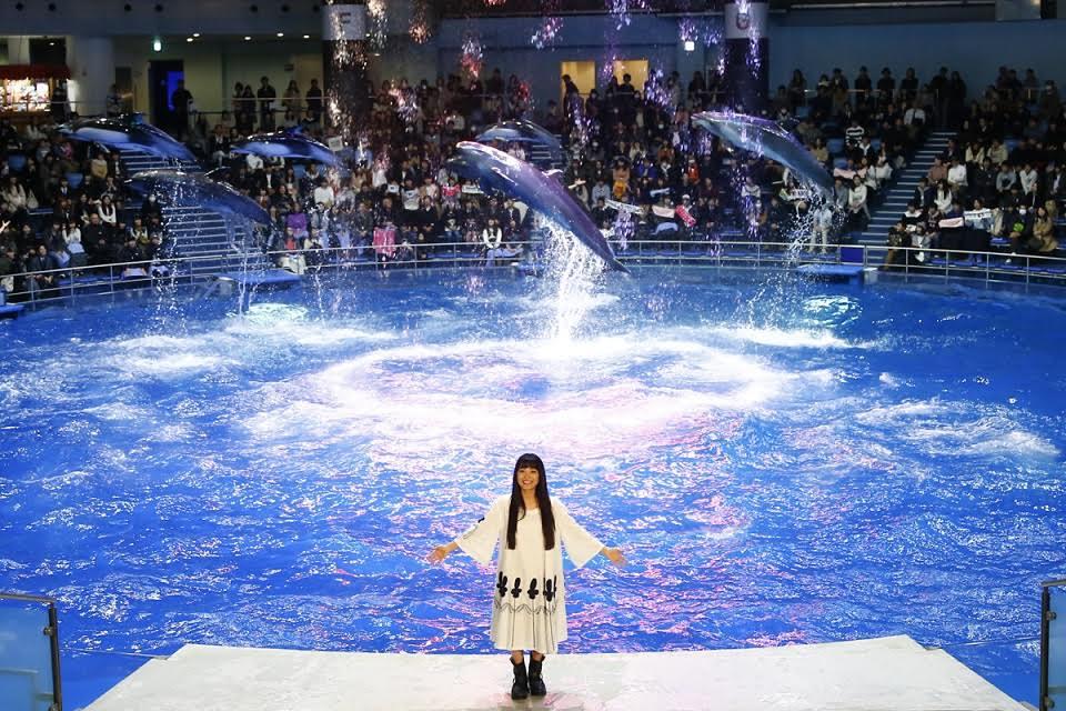 miwa、イルカと幻想的なコラボパフォーマンス。念願の飼育員にも挑戦で「夢のようです!」