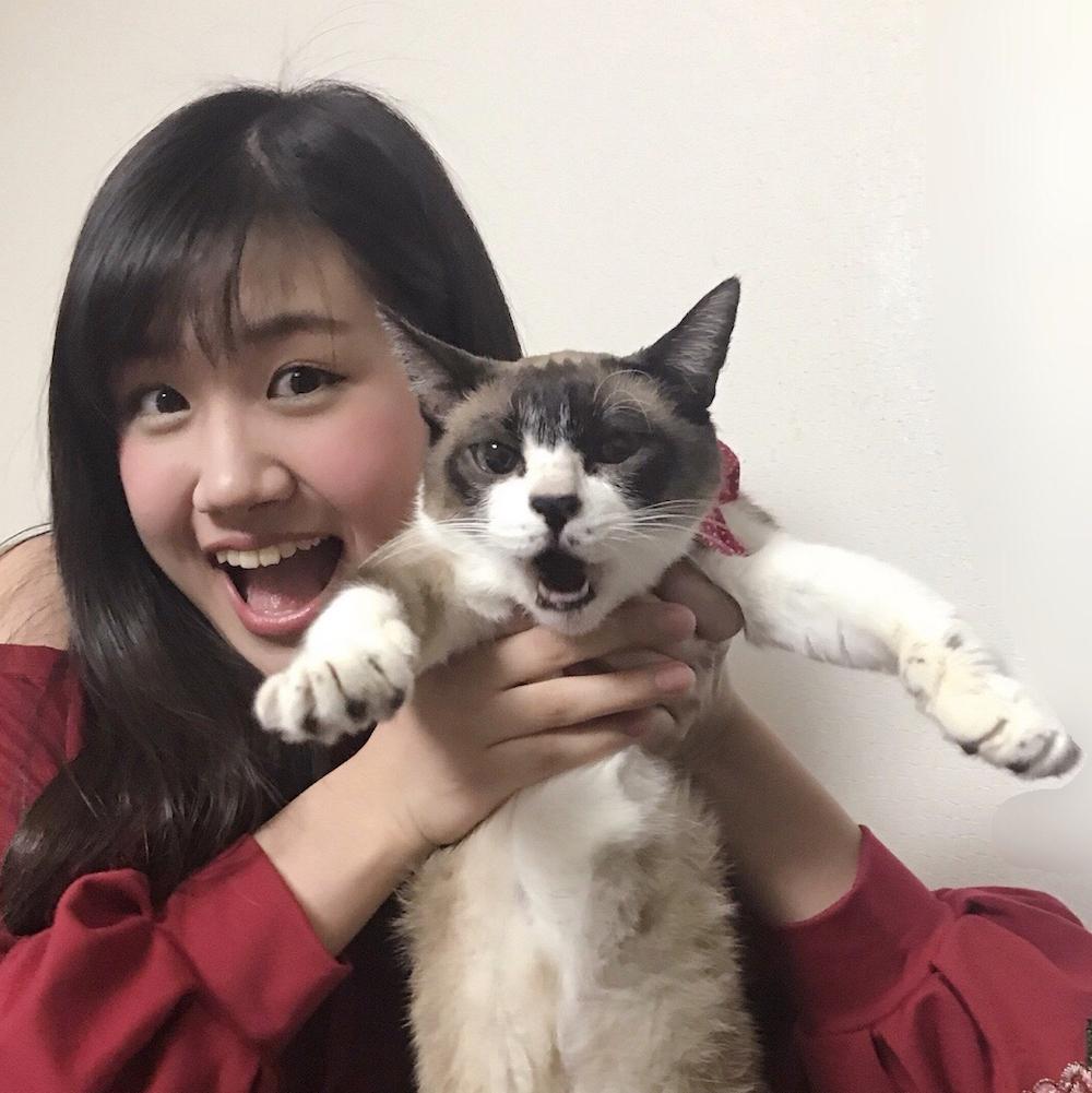 """大の猫好き南口奈々(GEM)が""""猫の日""""に愛猫とシンクロ写真公開サムネイル画像"""