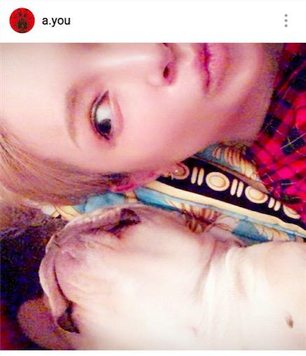 浜崎あゆみ、愛犬との添い寝ショット&博多弁公開で「可愛さばつぐん」「ほっこりする」サムネイル画像