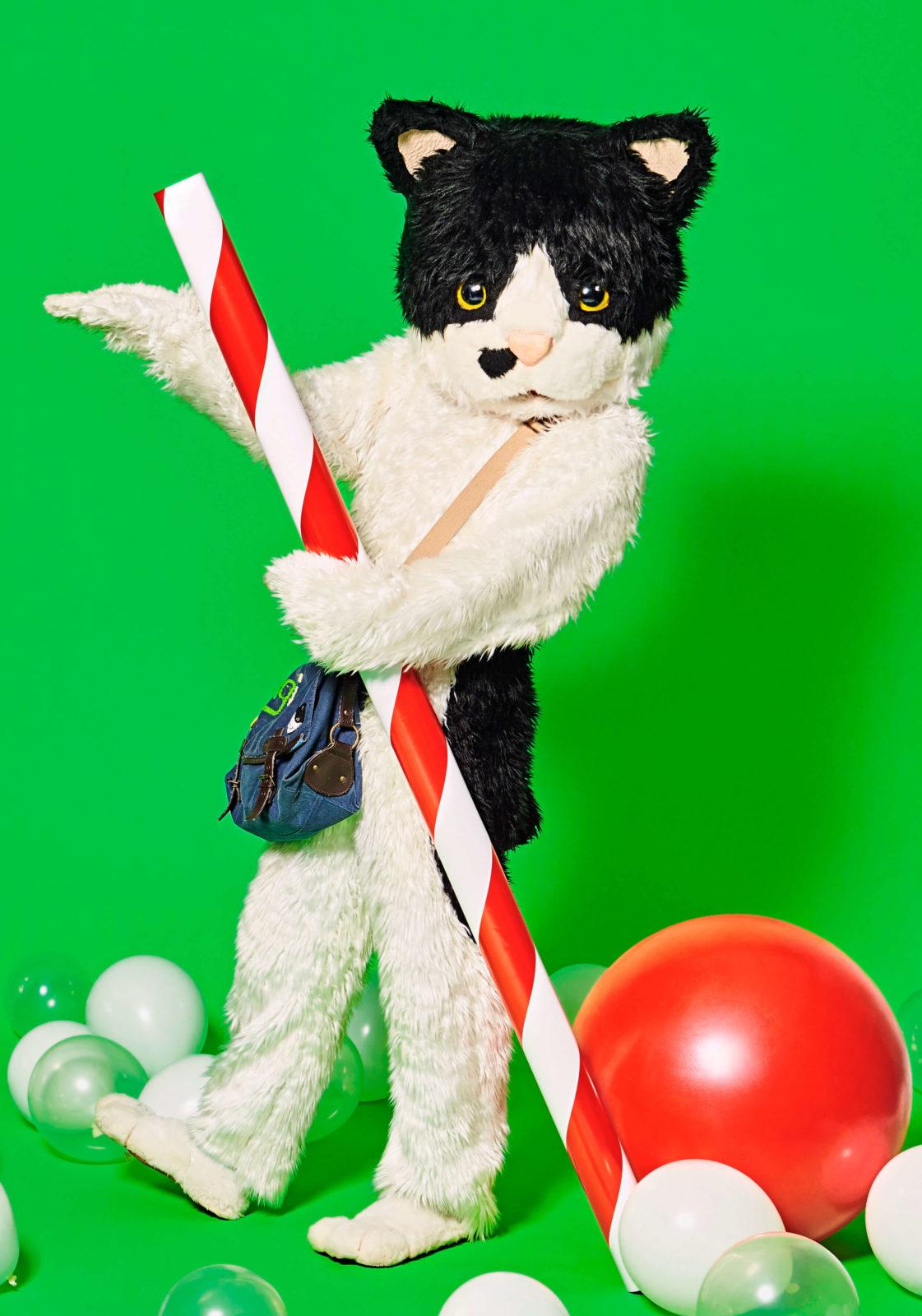 猫のミュージシャン むぎ(猫) 、スペシャ&ビクターLINE LIVEにてメジャーデビュー直前スペシャル番組を緊急配信サムネイル画像
