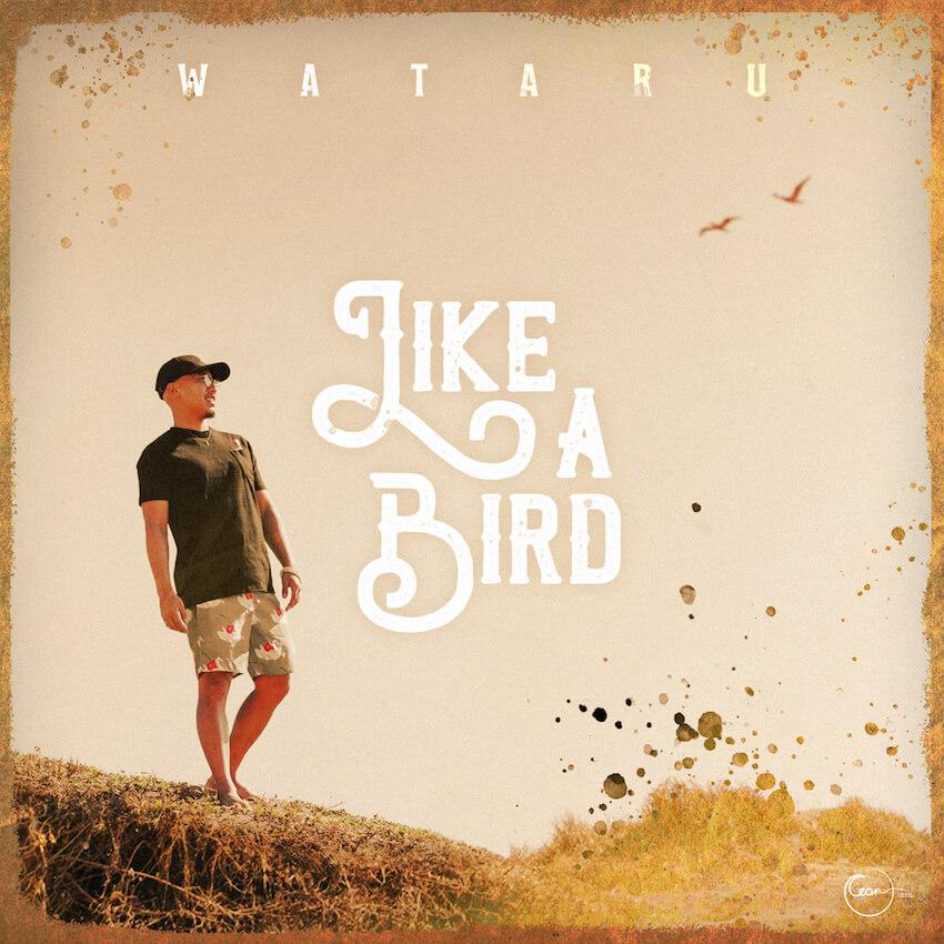 サーフミュージシャン・WATARUの新曲「LIKE A BIRD」がサーフィンCMソングに決定サムネイル画像