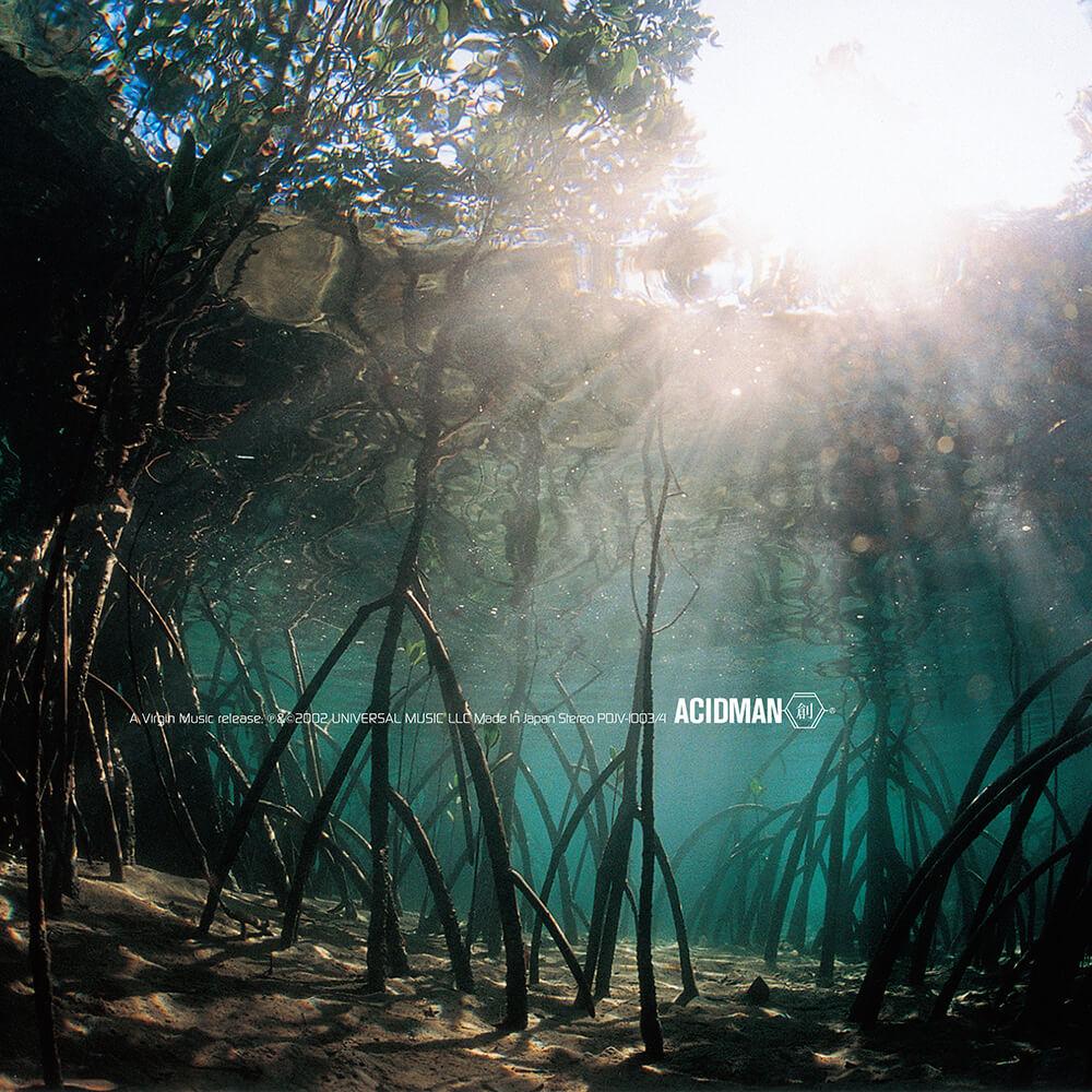 ACIDMAN、メジャーデビューアルバム「創」のアナログ盤予約受付を開始