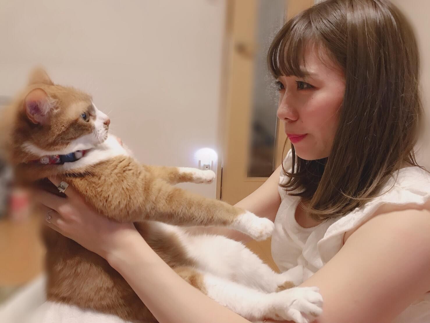 """Chu☆Oh!Dolly・おおぶもえ、愛猫""""ちゃぶ""""は「癒しです」サムネイル画像"""