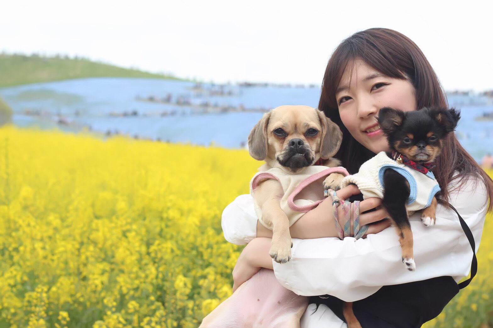 ウエスト55cm!あやかまること服部彩香が2匹の愛犬にキュンとくる瞬間とは?「朝起きると…」サムネイル画像!