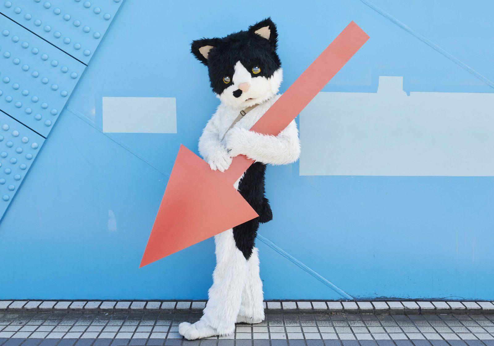 猫のミュージシャンむぎ(猫)、 メジャー1st EP発売を発表サムネイル画像