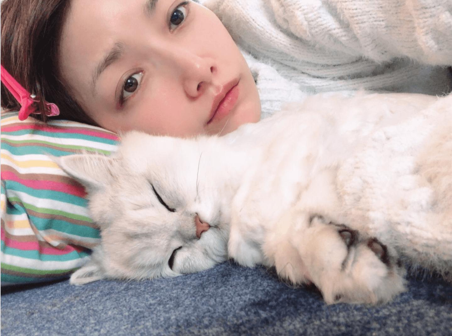 """後藤真希、愛猫との""""添い寝""""リラックスSHOT公開「ふと見たらこんな顔して…」サムネイル画像"""