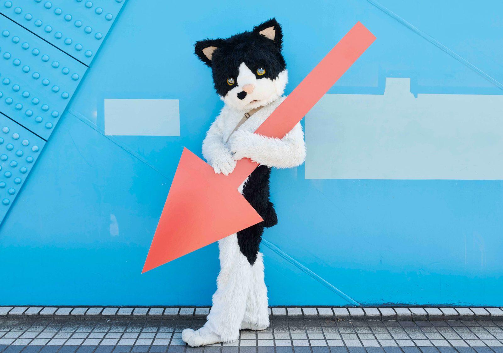 むぎ(猫)、2017年発売のアルバム『天国かもしれない』が配信リリース決定サムネイル画像